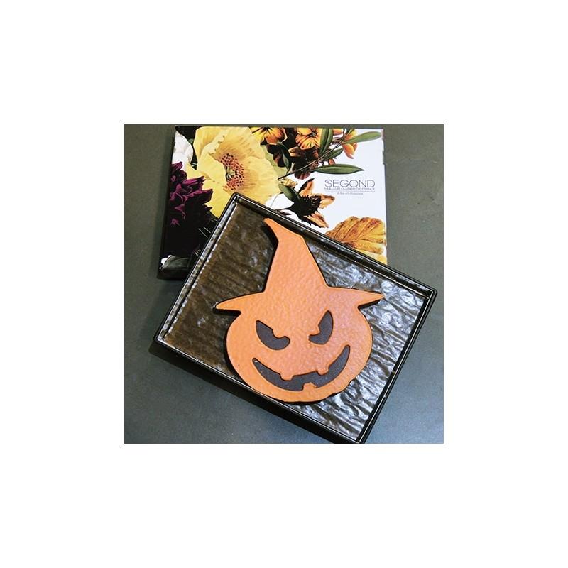 Chocolat Citrouille praliné 165g