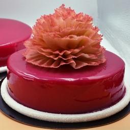 Accueil Gâteau Signora