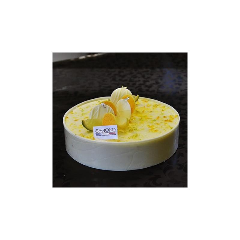 Glaces Gâteau glacé Sapristi