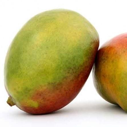 Glaces Sorbet mangue