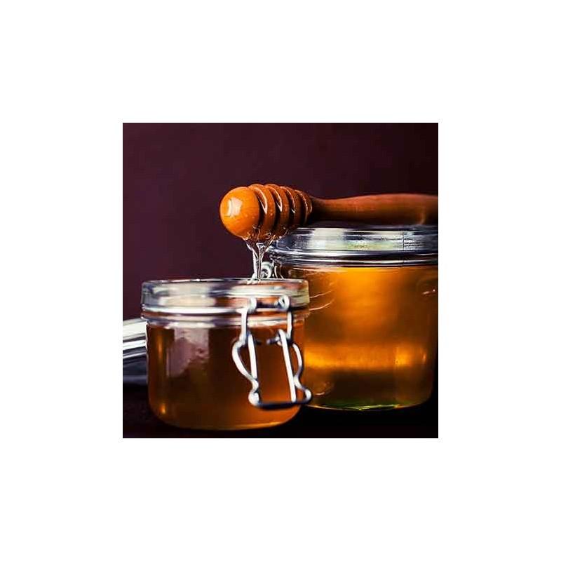 Glaces Glace miel - pignons